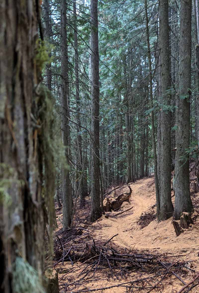 Moscow Mountain Trails